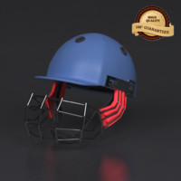 3d cricket helmet model