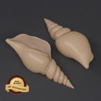 shell 3d fbx