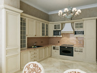 interior classic kitchen 3d max