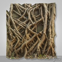 banyan roots wall 3d max