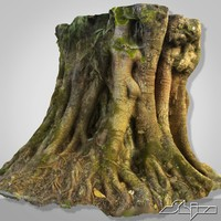 3d tropical tree scan