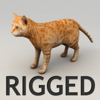 Red cat rigged model