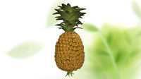 pineapple ananas comosus 3d model