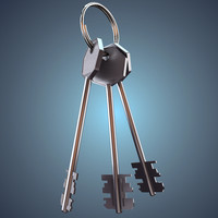 3d model bunch keys