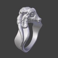 ring goat 3d model