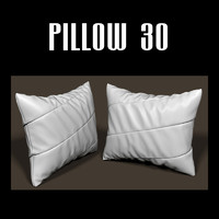 pillow interior 3d x