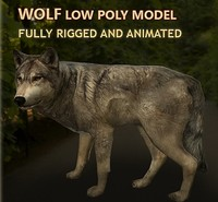 3d model wolf rigged animations