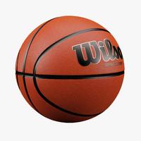 3d basketball wilson model