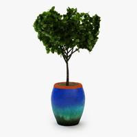 3d planter tub plant