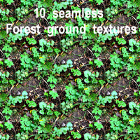 Forest Ground Collection 1