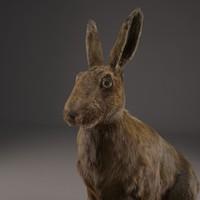 max realistic hare