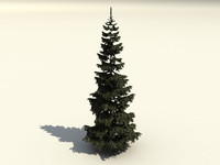 fir branches trunk 3d 3ds