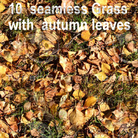 Grass with Autumn Leaves Collection 1