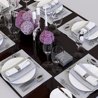 3d set table dinner model