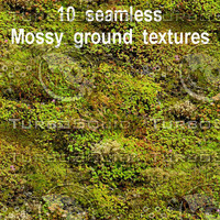 Mossy Ground Collection 1