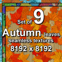 Autumn Leaves 9x Seamless Textures