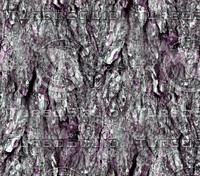 Tree bark 24