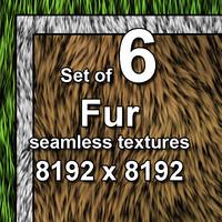 Fur 6x Seamless Textures