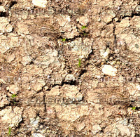 Dry cracked ground 1