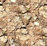 Dry cracked ground 1