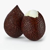 realistic salak fruit real max