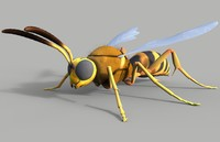 3d cicada killer