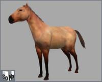 horse lightwave lwo