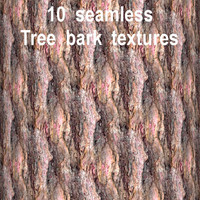 Tree Bark Collection 3