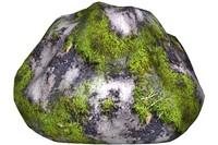 Mossy rock 15
