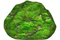 Mossy rock 19