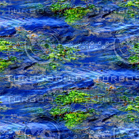 Ocean water with seagrass 1
