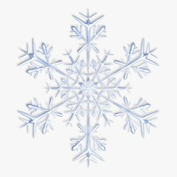 snowflake 3D models