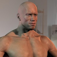 3d arnold male man
