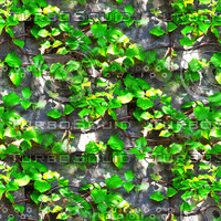Stone wall with vines 2