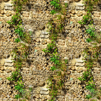 Stone wall with vines 3