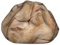 Rock 44