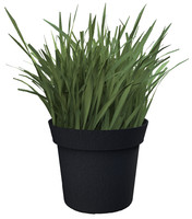 Grass, Artificial potted plant