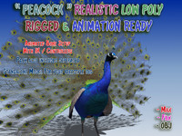 peacock rigged animation max