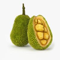 3d realistic jackfruit real fruit model
