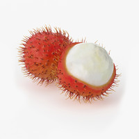 realistic rambutan fruit real 3d model