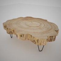 Table Wood Slice - A
