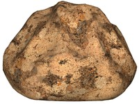 Rock 48