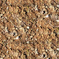 Dry mud 1