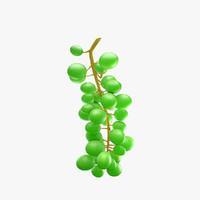 3d grapes