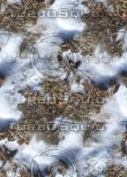 Snow on ground 1