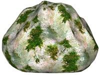Mossy rock 24