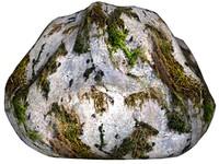 Mossy rock 25