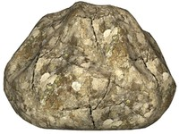 Rock 54