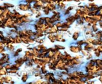 Snow on leafy ground 3