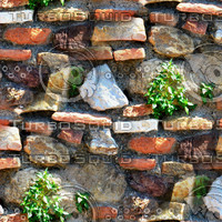 Stone wall with bricks and plants 1